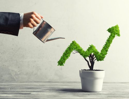 Take Your Business to Next Level: Business Growth Strategies